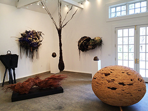 Donna Forma Natural Sculpture Artist Connecticut gallery