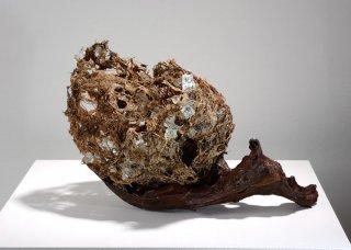 ESCAPE by Natural Sculpture Artist Donna Forma