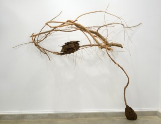 NOBODY KNOWS THE EFFECT OF YOUR INFLUENCE by Natural Sculpture Artist Donna Forma