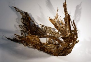 RUNAWAY SECRETS by Natural Sculpture Artist Donna Forma