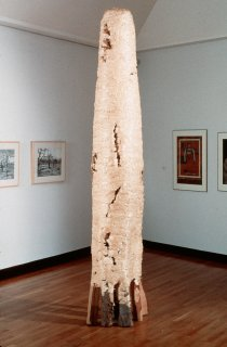 CYPRESS by Natural Sculpture Artist Donna Forma