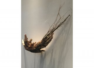 WINDS OF CHANGE by Natural Sculpture Artist Donna Forma