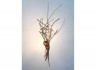 YUP, GOT IT UNDER CONTROL by Natural Sculpture Artist Donna Forma