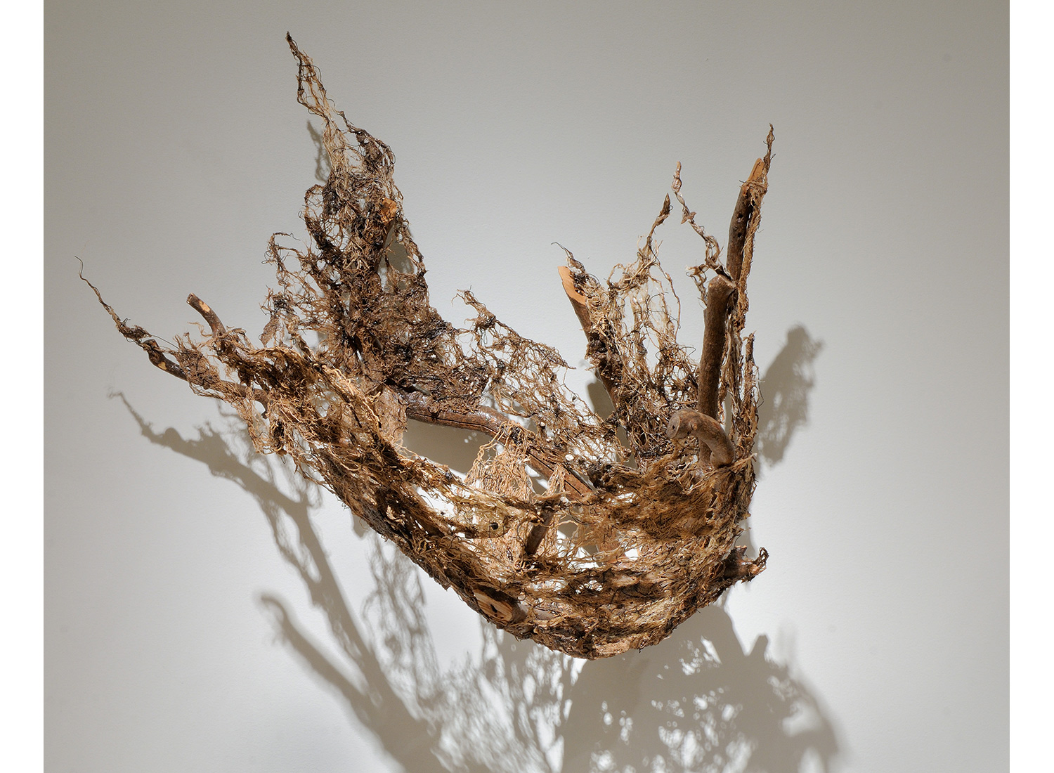 Runaway natural art sculpture from Donna Forma