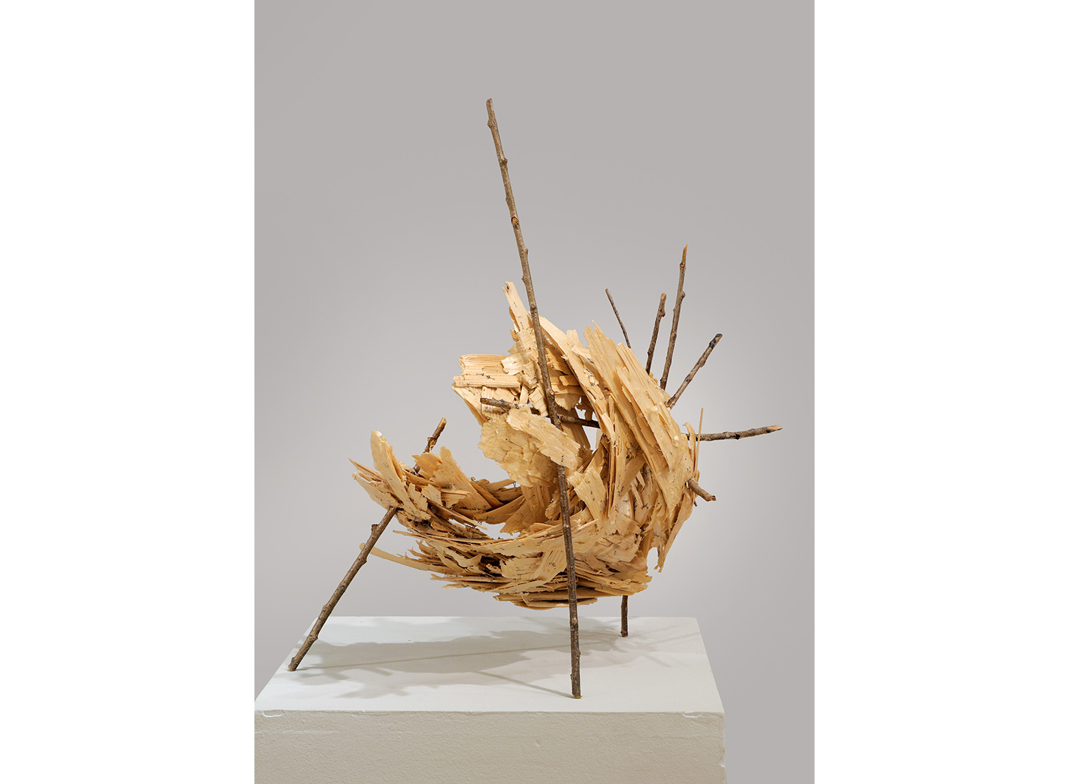 Belle Voyage natural art sculpture from Donna Forma