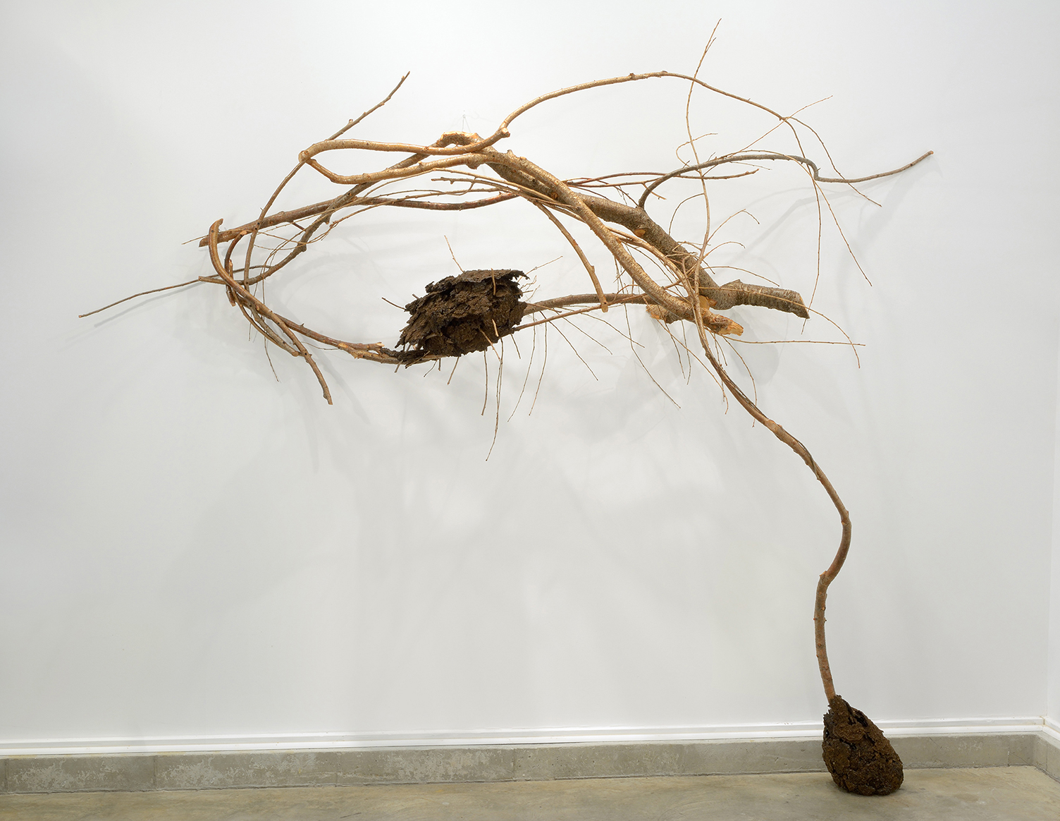 Nobody Knows the Effect of Your Influence natural art sculpture from Donna Forma